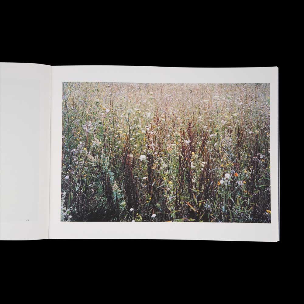Autour/Around, Photographies de Benoît Fougeirol, poèmes de Michaël Batalla, tiré à 1000 exemplaires, édition VMCF, Keanu Reeves.