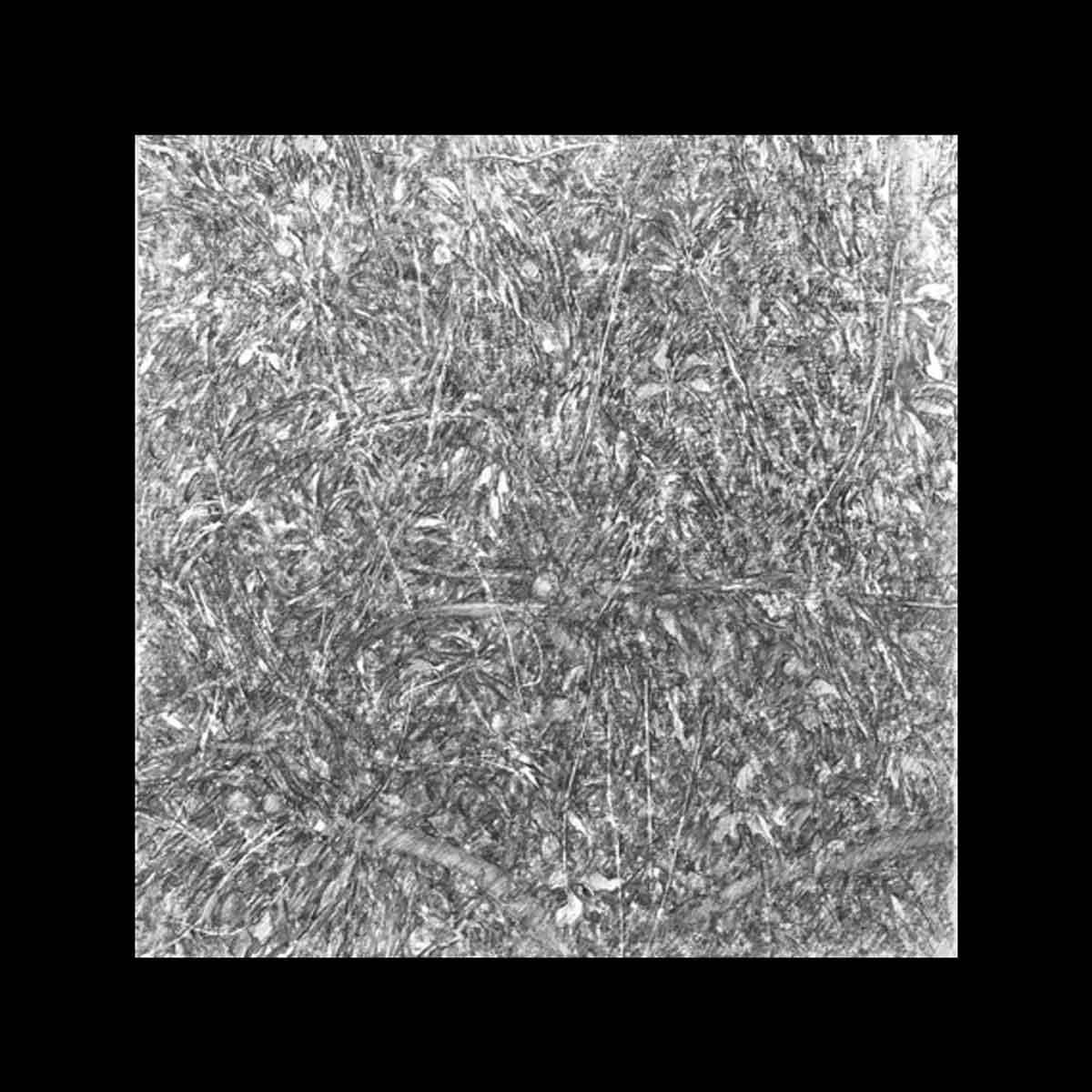 Michel Houssin, Dessin à la mine de plomb de la Série des Broderezh, 2015. Encadré, verre musée anti-UV, 30 x 30 cm