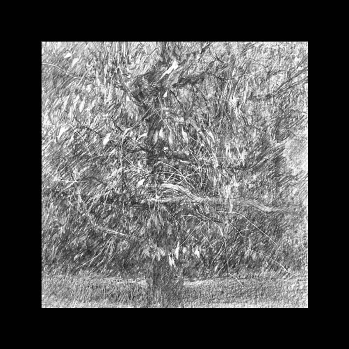 Michel Houssin, Dessin à la mine de plomb de la Série des Broderezh, 2017. Encadré, verre musée anti-UV, 30 x 30 cm